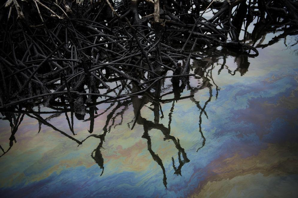 Il delta del Niger sacrificato per i               petro-dollari. Credit: BENEDICTE KURZEN / NOOR POUR LE MONDE.