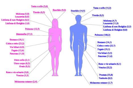Puglia al check up inquinamento e 39 paradosso di lecce - Diversi tipi di seno ...